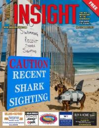 Spanish Insight August 2019