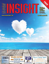 Spanish Insight February 2014