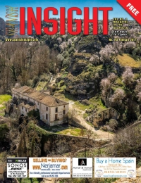 Spanish Insight February 2017