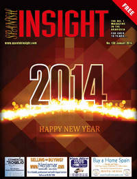 Spanish Insight January 2014