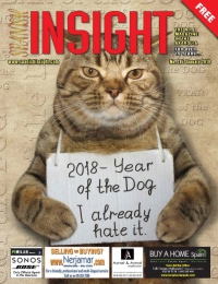 Spanish Insight January 2018