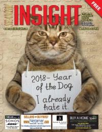 Spanish Insight January 2018