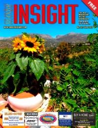 Spanish Insight June 2019