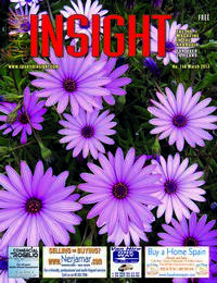 Spanish Insight March 2013