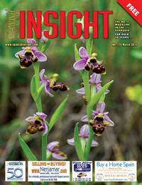 Spanish Insight March 2015