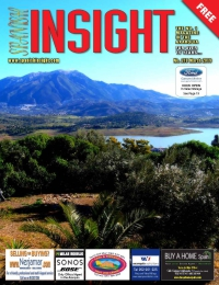 Spanish Insight March 2019