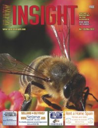 Spanish Insight May 2012