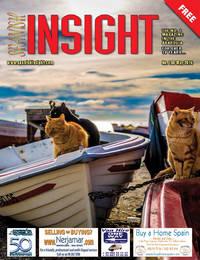 Spanish Insight May 2014