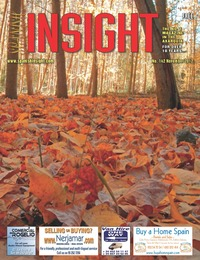 Spanish Insight November 2012