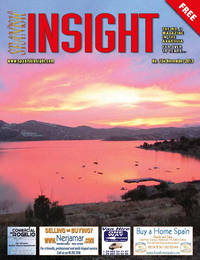 Spanish Insight November 2013