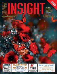 Spanish Insight November 2015